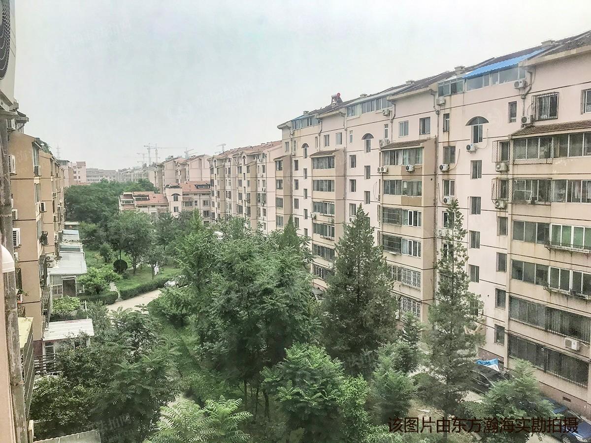 桃园公寓1号楼B单元16室